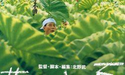 菊次郎の夏 | 悲しみの中に温かさが残る作品